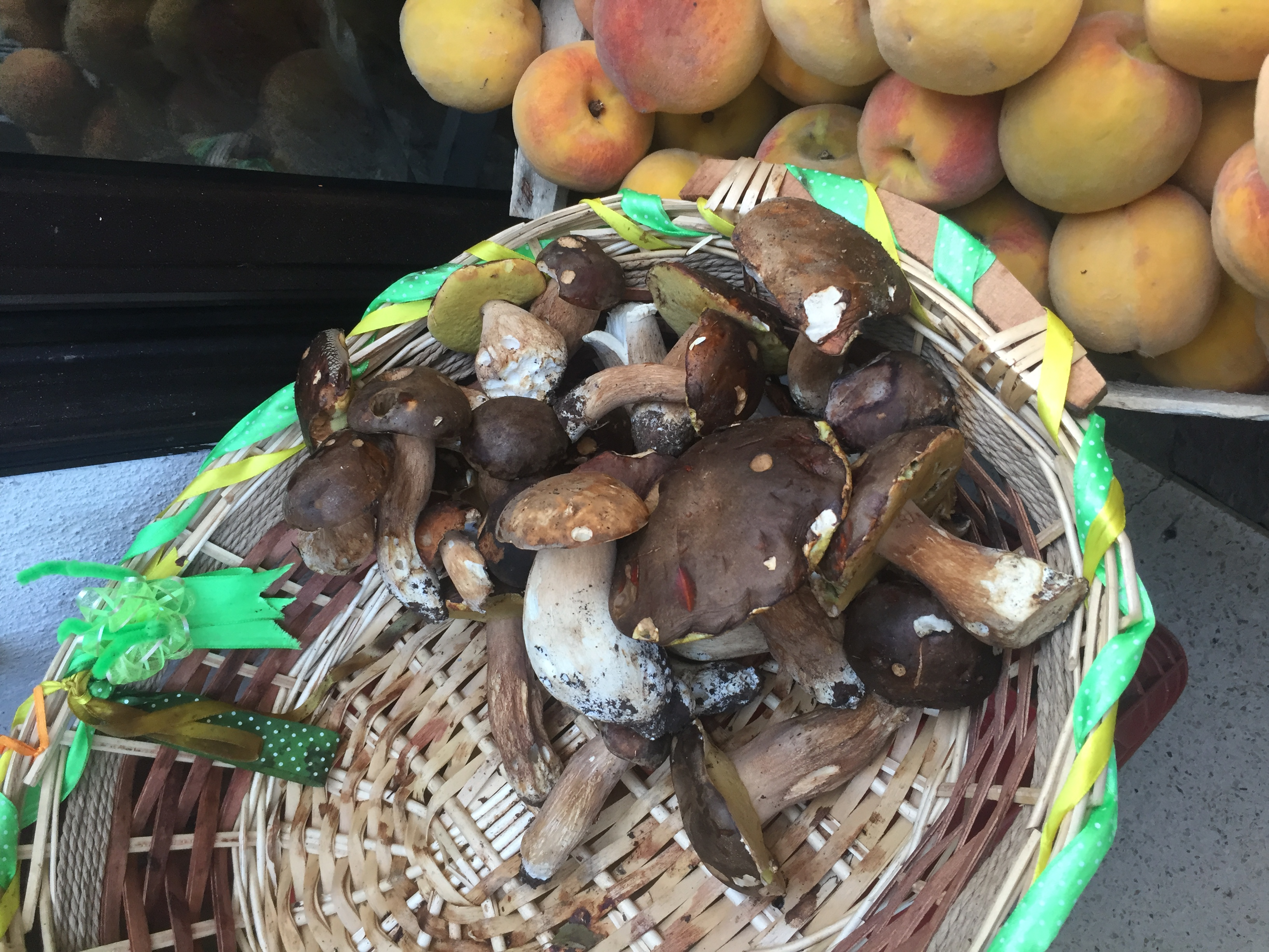 Fresh mushrooms in Santa Domenica Talao